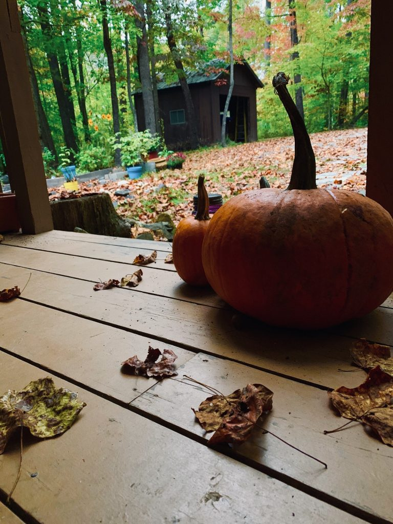 Read more about the article The Great Pumpkin